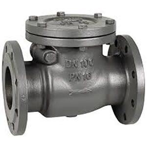 Sewage Check Valve